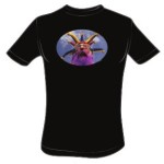 Jester For Jesus – Plain No Text – Large t-shirt